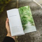 diseño flyers y folletos post