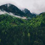 sostenibilidad pacto mundial